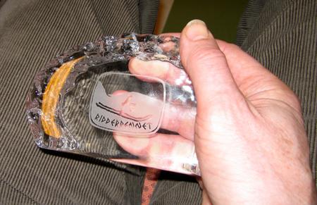 20060329medalje.jpg